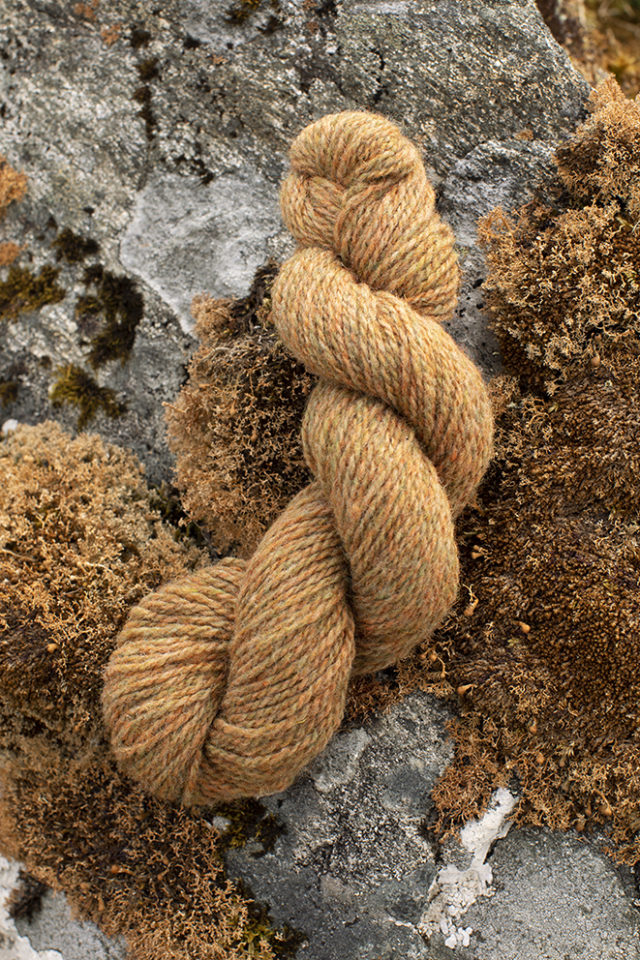 Alice Starmore 2 Ply Hebridean hand knitting yarn in Corncrake