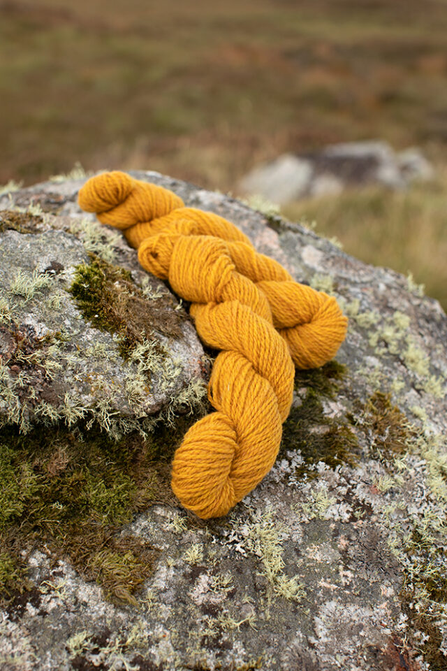 Alice Starmore 2 Ply Hebridean hand knitting yarn in Whin