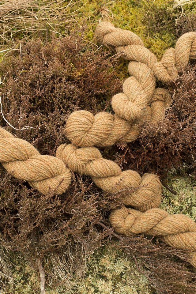 Alice Starmore Hebridean 2 Ply pure new British wool hand knitting Yarn in Corncrake colour