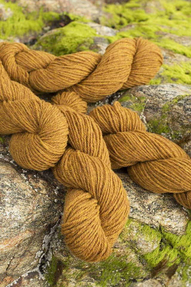 Alice Starmore Hebridean 3 Ply pure new British wool hand knitting Yarn in Golden Plover colour