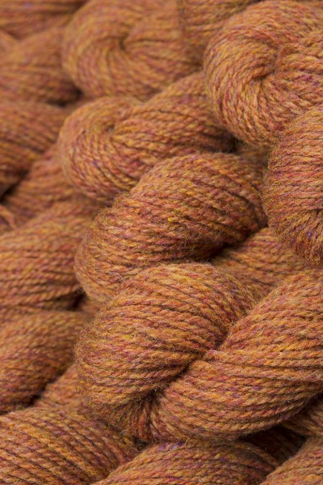 Alice Starmore Hebridean 2 Ply pure new British wool hand knitting Yarn in Sundew colour