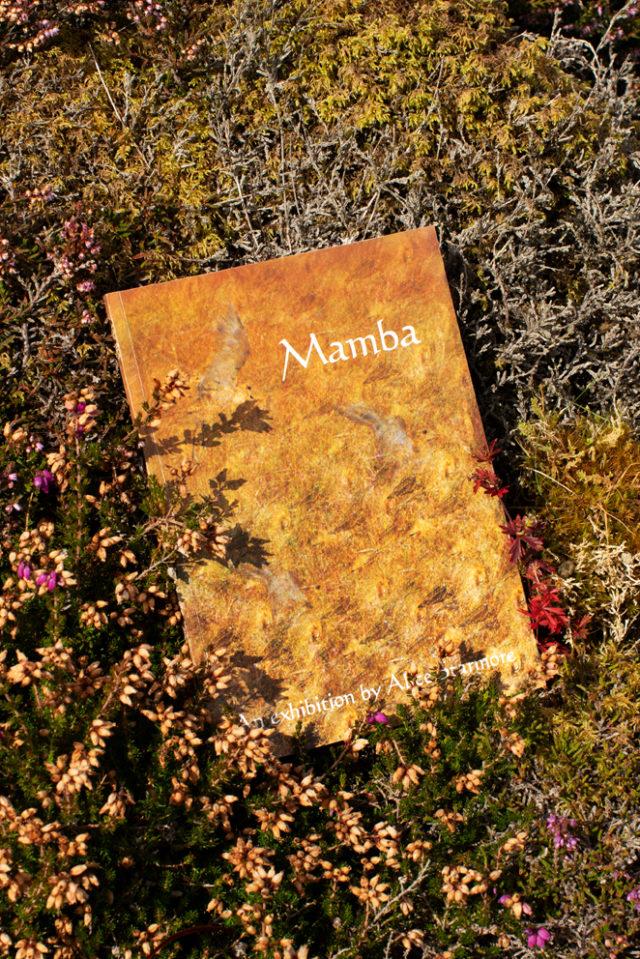 Mamba by Alice Starmore