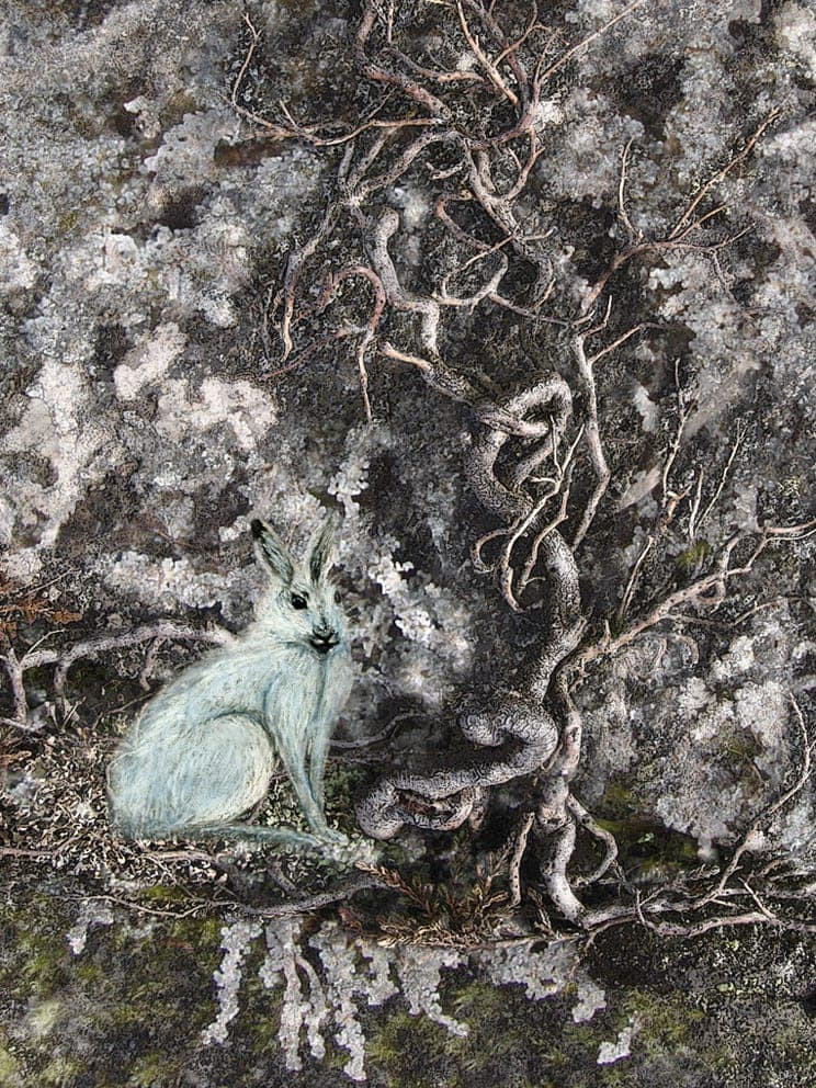 The Witch Hare by Alice Starmore