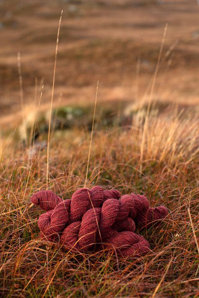 Alice Starmore 2 Ply Hebridean hand knitting yarn in Red Deer